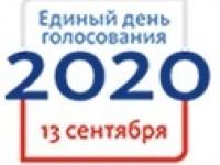 Общественная палата Пензенской области готовится к наблюдению в Единый день голосования.