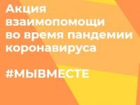 Члены Общественной палаты Пензенской области – участники акции #МыВместе.