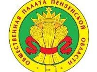 Началась процедура формирования нового состава Общественной палаты Пензенской области.